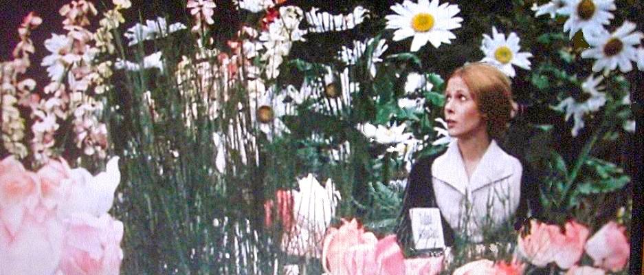ile aux trente cercueils claude jade fleurs